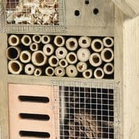 Pet Ting Natural Wooden Insect House